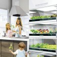 The Nano Garden Lets You Grow Veggies Right in Your Kitchen