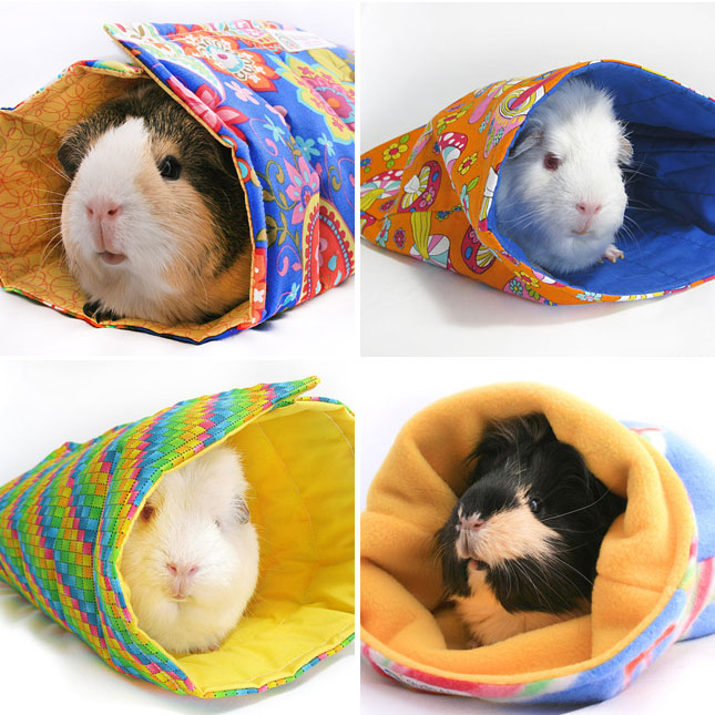 ... Pig Sleeping Bags : What guinea pig doesn't need a sleeping bag
