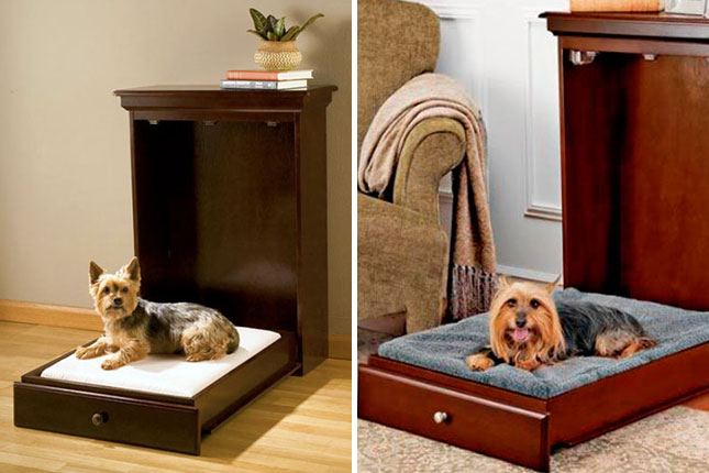 Bonus murphy bed for pets 58 what about your furry friends
