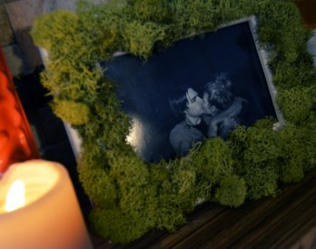 No-Fuss Gardening: Moss-Covered Picture Frames