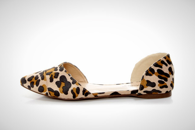 Dolley 03 Leopard