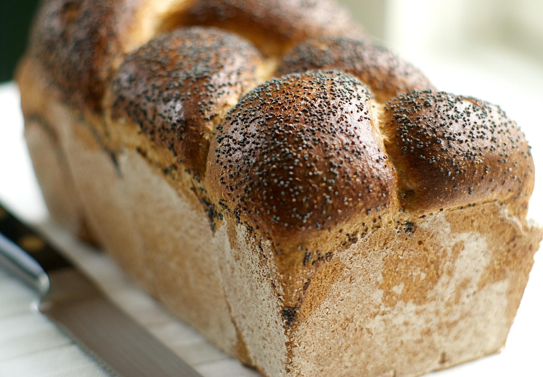 Farmhouse Whole Wheat Bread | Brit + Co