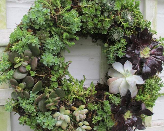 14 idee fai da te per creare bellissimi giardini verticali for Giardini idee fai da te