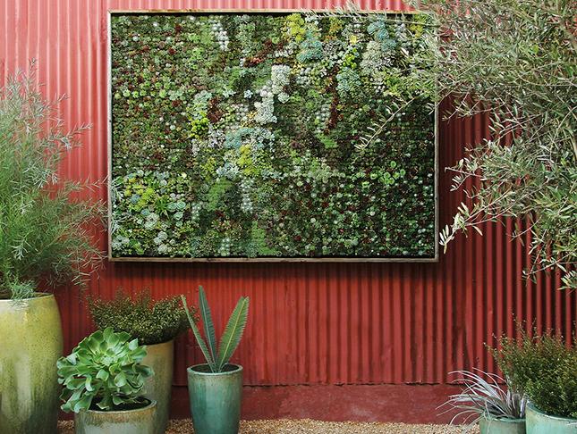 14 idee fai da te per creare bellissimi giardini verticali - Pannelli per giardini verticali ...