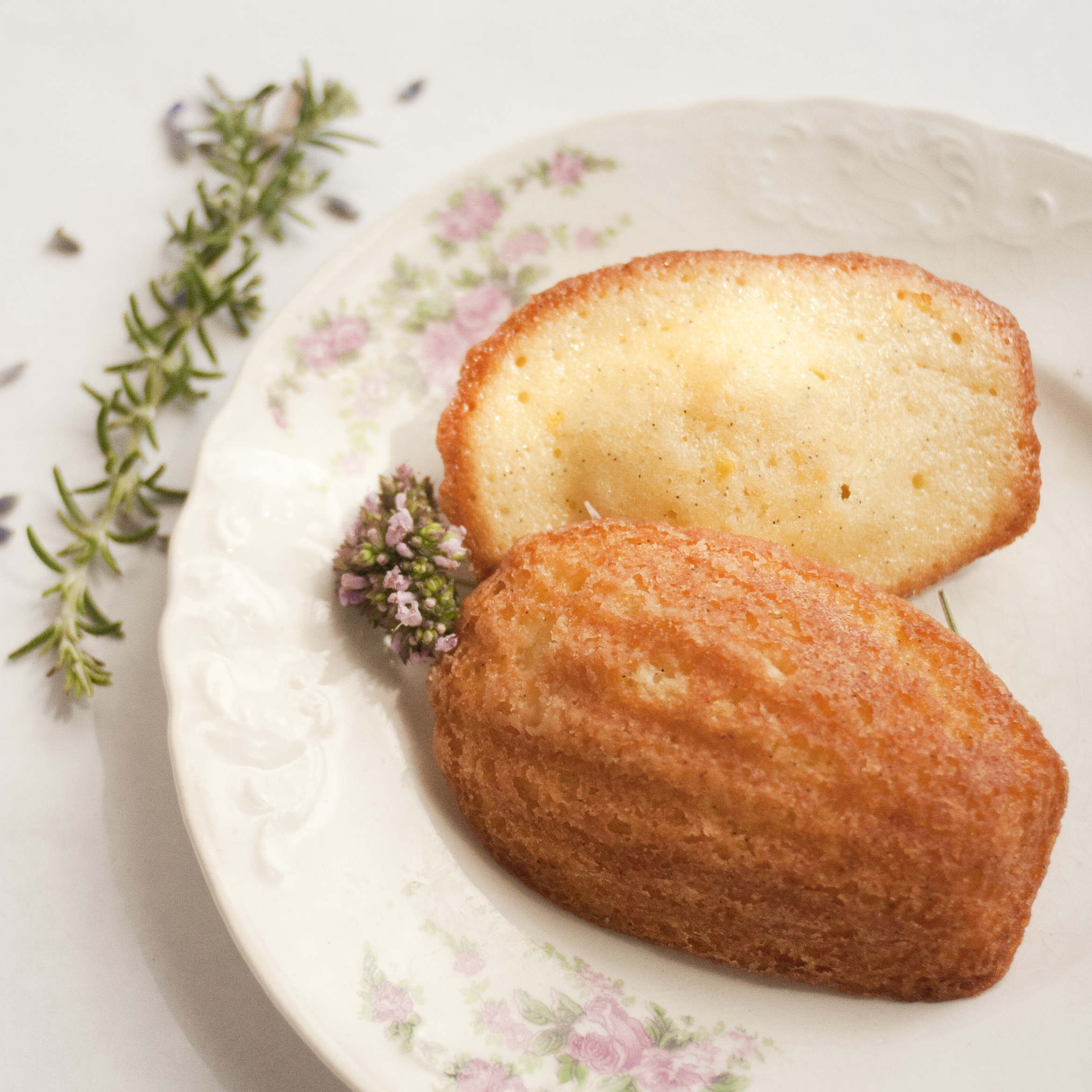 Vanilla Bean Madeleine : Freckled with a generous amount of vanilla ...